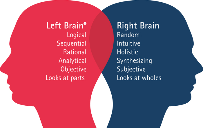 Connection of Brain & Fingers
